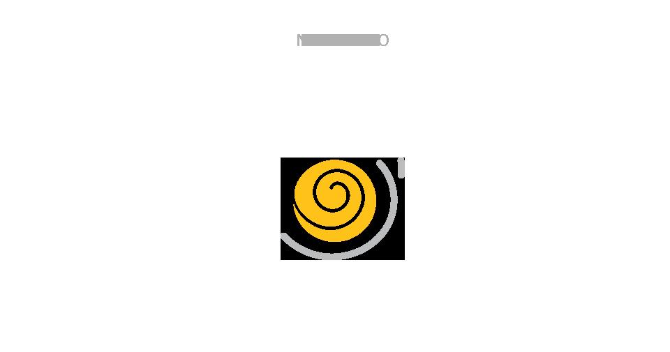 DSM3_new-Logo